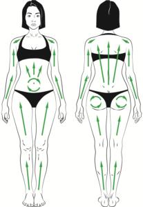 техника выполнения сухого массажа_массажные линии на контурах тела_Экобраш1